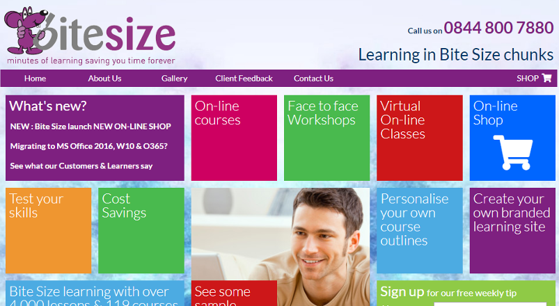 Bite Size : eLearning with 3000+ lessons online